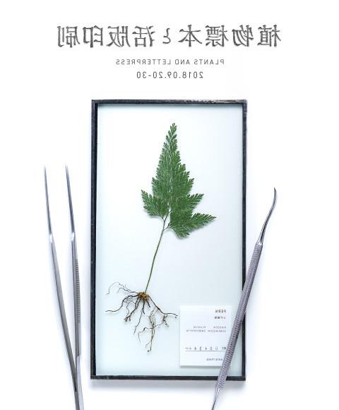 植物標本と活版印刷 Plants Trade|Plants Trade|2018 9/20【thu】〜9/30【sun】